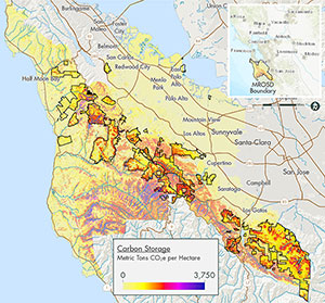 Map of carbon stored in plants and soils in the Midpeninsula area.