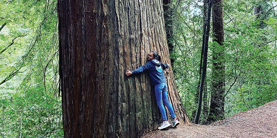 a teenage girl hugging a large redwood tree