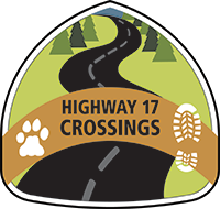 Hightway 17 Crossings logo