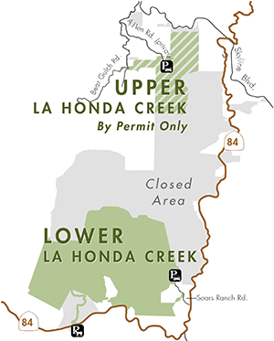 Open areas of La Honda Creek Open Space Preserve