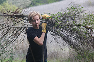 Youth volunteers clearing nonnative brush