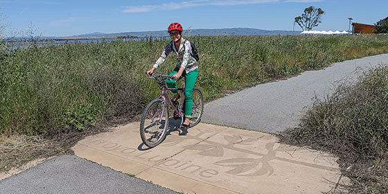 Bicyclist at Ravenswood Open Space Preserve © John Green