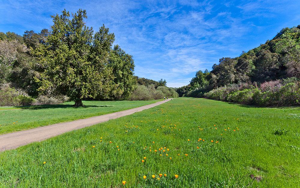 Rancho San Antonio Preserve Midpeninsula Regional Open