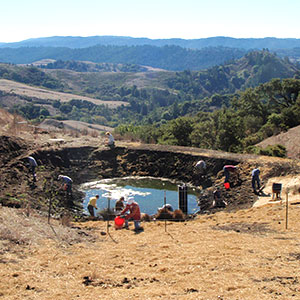 La Honda Creek Open Space Preserve Pond Restoration