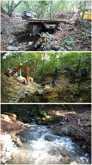 Creek restoration: before, during and after