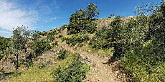 A new 3.7-mile trail leads to the summit of Mount Umunhum.